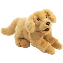 Hund Bello