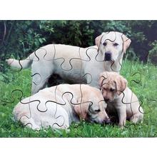 """Puzzle-Set """"Bauernhoftiere"""""""