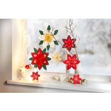 """Sachenmacher """"Fensterbild Weihnachtsstern"""""""