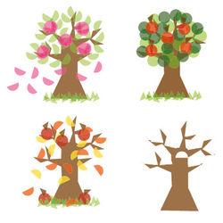 "Window Film Fröbel ""Season Tree"""
